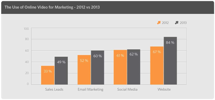 Video Marketing Usage 2013